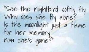 Lyric from Nightbird
